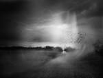 Angela Bacon-Kidwell: This is the Air I Breathe, 2013