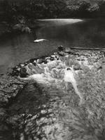 Anne Arden  McDonald: Untitled Self-Portrait #29, 1990