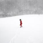 Cig Harvey: Scout in the Blizzard, 2017