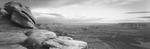 David H. Gibson: Rock Head, Dead Horse Point, Moab, Utah, 1991