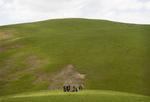 Frank Ward: Picnic, High Pastures, Kyrgyzstan, 2012