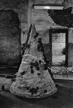 Gary Cawood: Discarded Christmas Tree, 1995