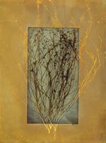 James Hajicek & Carol Panaro-Smith: Earth Vegetation/06-9, 2006