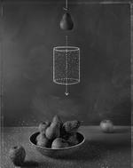 John Chervinsky: Where Fruit Comes From, 2010