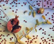 Jo Whaley: Natura Morta