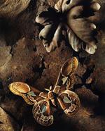 Jo Whaley: <i>Rothschildia</i>