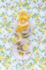 JP Terlizzi: Gracie Lemonata with Lemon, 2019