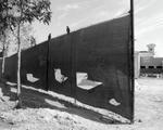 Mark Surloff: Fence and Birds, 1981
