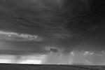 Mitch Dobrowner: Fish and Fence, 2014