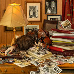 Patty Carroll: Scrapbooking