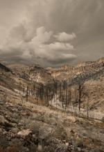FIRE GHOSTS: Patricia Galagan – Eagle Canyon, 2014