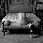 Robert Stivers: Woman, Dog, Bed, 1988