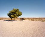 Ryann Ford: Near Millers, Nevada - U.S. 95