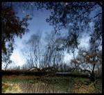 Susannah Hays: Mirror Landscape 3