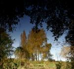 Susannah Hays: Mirror Landscape 5