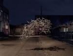 Thomas Jackson: Broken Pallet, 2011