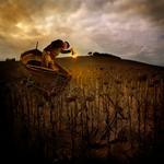 Tom Chambers: Autumn Moorage