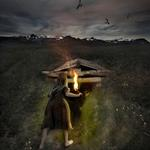 Tom Chambers: Empty Roost