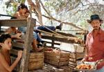 Tria Giovan: Man Selling Maranon-Point Maisi, Cuba, 1991