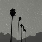 Vanessa Marsh: Landscape #39