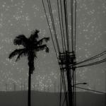 Vanessa Marsh: Landscape #5, 2012