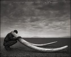 Nick Brandt : Across The Ravaged Land.
